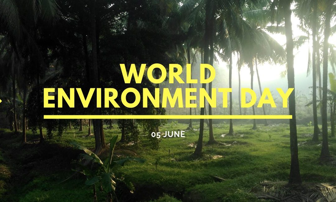 15 Things You Can Pledge on World Environment Day 2019